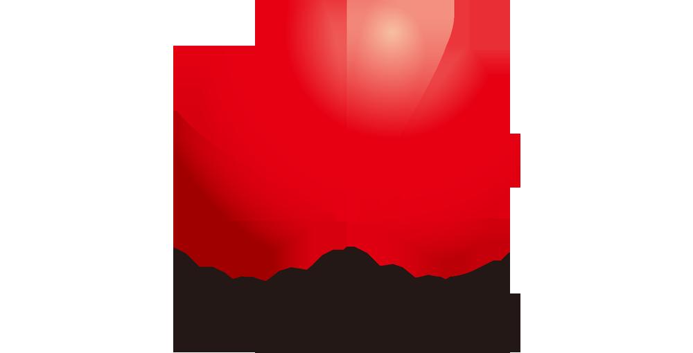 Huawei Switzerland AG Logo